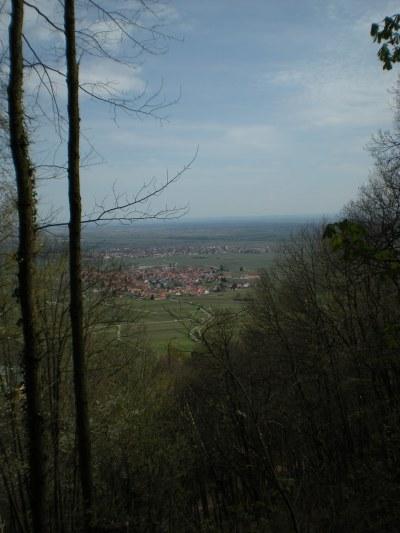 Looking down on Rhodt... or possibly its neighbouring village, Edenkoben.