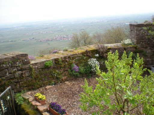 A cute little garden area up at the castle