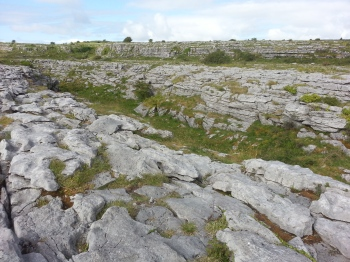Some of the cool limestone surrounding the dolmen
