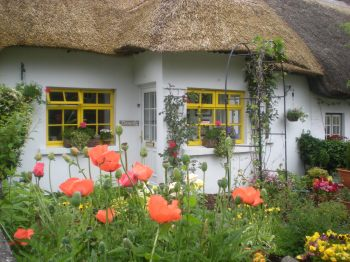 One of the thatched cottages in the village of Adare