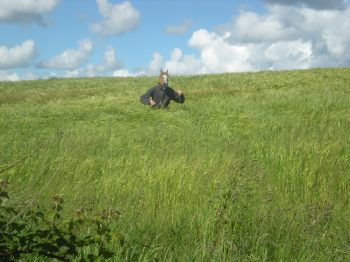 Charlie in a field