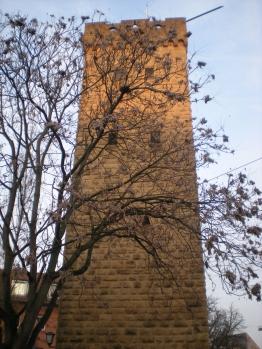 Götzturm, Heilbronn