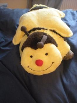My pillow pal