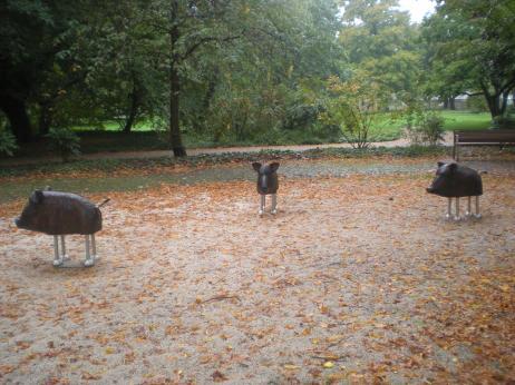Schlosspark boars
