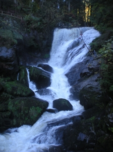 Triberg waterfall 2