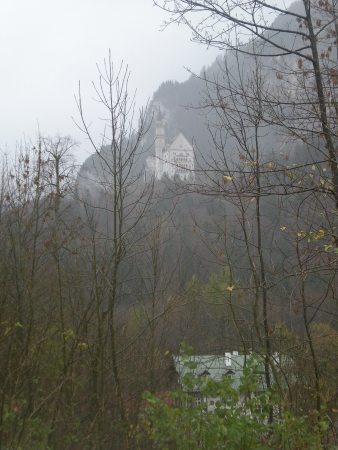 Neuschwanstein, viewed through the trees