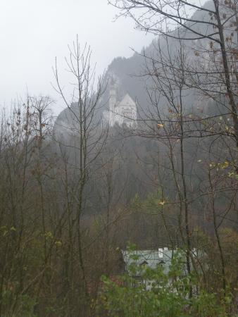 Neuschwanstein, viewed through the trees