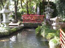 """The """"Oriental Garden"""" area of the tropical gardens"""