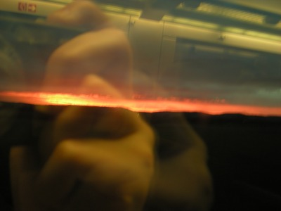 Aaahm window reflections...