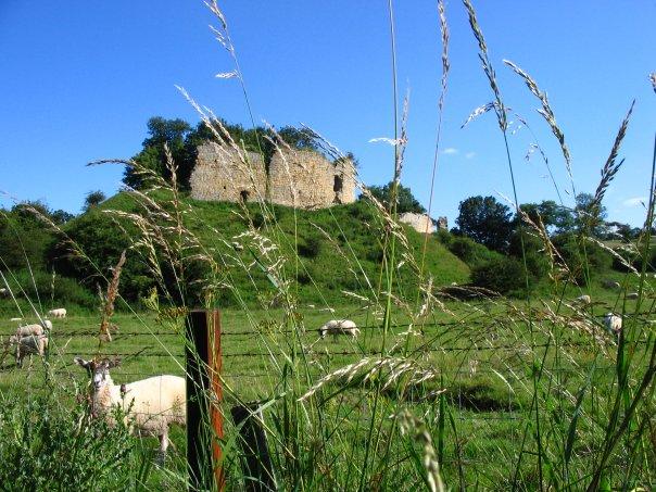 Mitford Castle