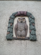 An owl on a wall!