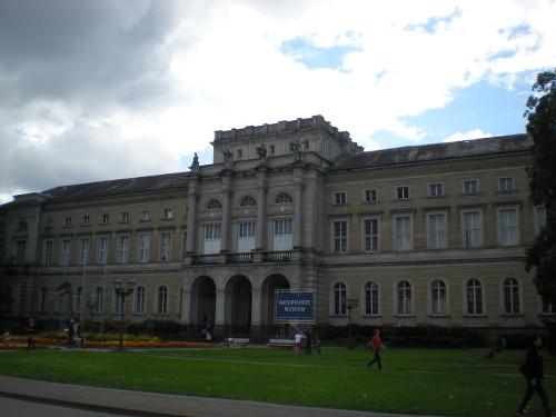 5-KA natural history museum