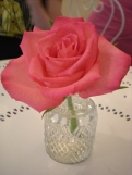 Pretty rose on our table
