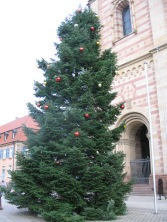 Christmas tree in front of the cathedral