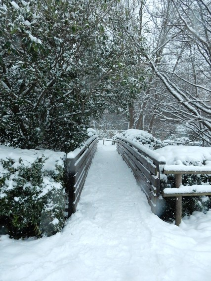 Cute snowy bridge