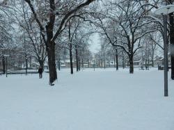 Snowy Lindehnhof