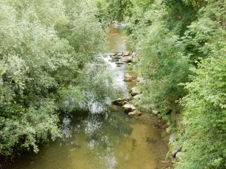 A stream in Sissach