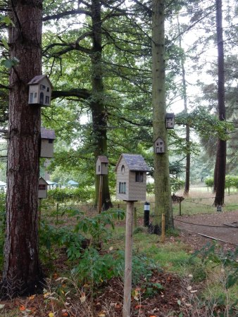 Aristic AND useful - these are actually used as bird houses