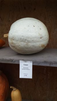 The friendly ghost pumpkin