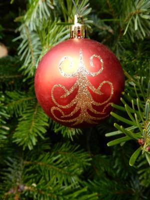Colmar Christmas18