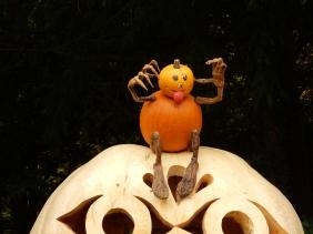 Little pumpkin guy