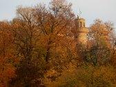 SO much autumn!