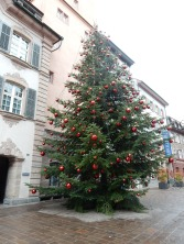 Christmas tree in front of Rheinfelden Rathaus