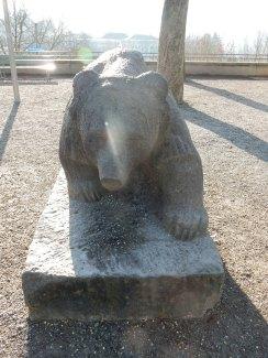 Bear in Bern
