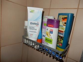 1_shower