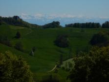 Alps again