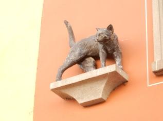Miaow!