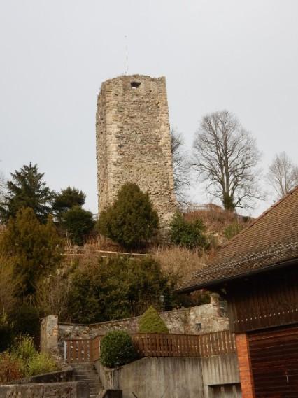 Laufenburg castle ruins