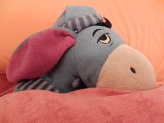 14-sleepy Eeyore