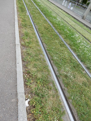 8-tram tracks