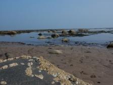 Amble beach