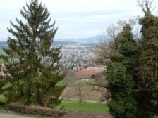 Basel view