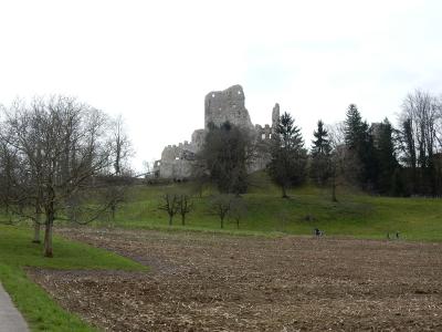 Ruine Pfeffingen