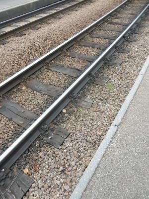 5-tram tracks